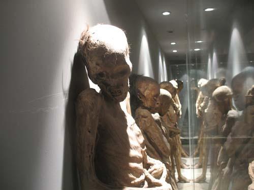 momias de guanajato